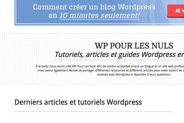 WP Pour Les Nuls